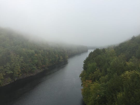 The first signs of foliage can be seen in trees along the Connecticut River.