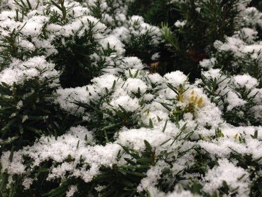 636186784956277636-snow5.jpg