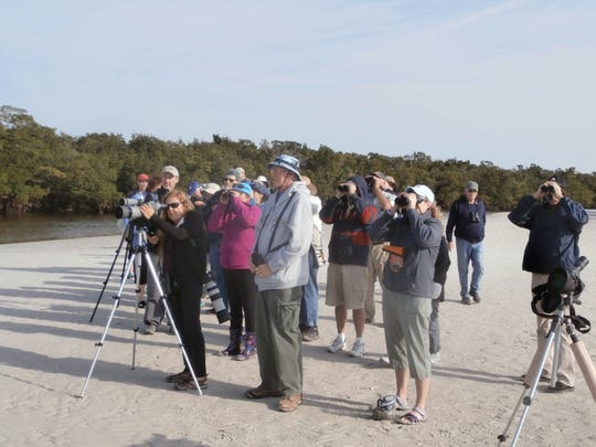 Binoculars, telescopes and cameras are out in force during a recent guided walk by the Bird Patrol on Bunche Beach.