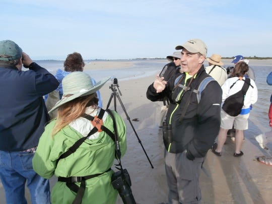 Bird Patrol President Charlie Ewell leads a guided walk with other expert volunteers along Bunche Beach.