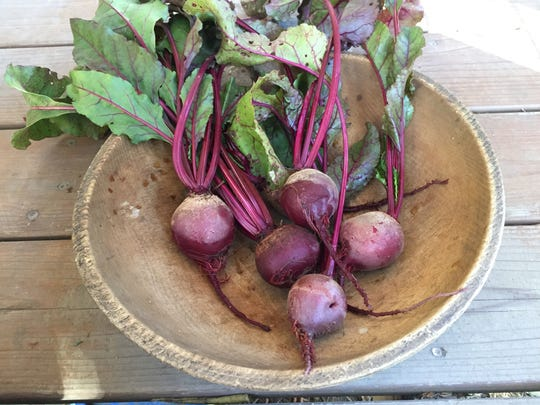 Detroit Dark Red beets from Hudson Valley Seed Company.