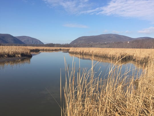 Constitution Marsh Audubon Center and Sanctuary is
