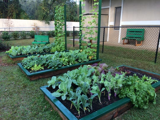 Raised-bed gardening can maximize production in a small amount of space.