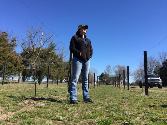 Brittany Mariner hopes to open a new winery in Worcester County near Showell as early as 2018.