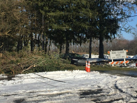 636252930061599239-downed-trees-and-wires.JPG