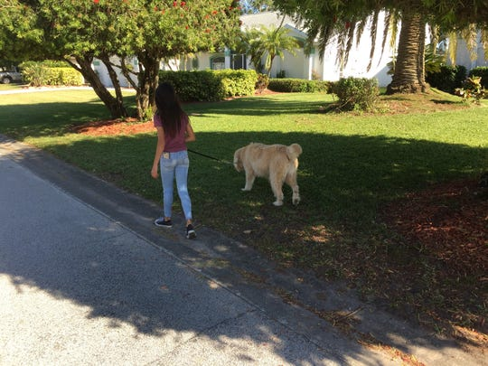 A Suntree resident walks the family dog. The planned