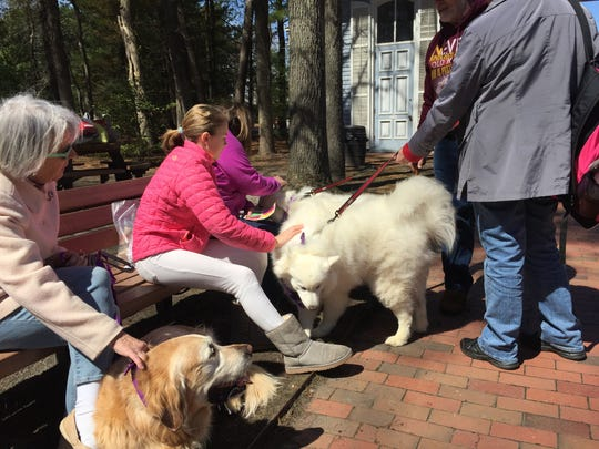 The Paws for Art event at WheatonArts and Cultural Center in Millville on Sunday was a social event for two-legged and four-legged visitors. (Left to right seated) Sandy Pedrick of Stow Creek; her granddaughter, Hannah, 11; and her daughter, Jan Pedrick of Cedarville were targets of affection of a pair of Samoyeds. Sandy Pedrick brought her golden retriever, Rusty (left), and Jan Pedrick their mixed breed Trixie.