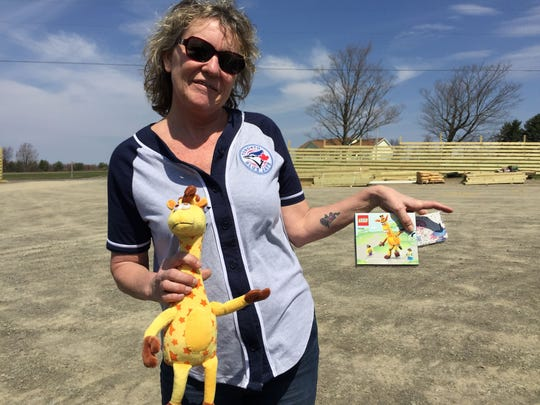 """Robin Grazier, 53, of Kitchener, Ontario, came to the park just hours after April the giraffe gave birth to a male calf. The zoo was closed but gave her and a friend Toys """"R"""" Us brand giraffe stuffed animals and LEGO sets."""