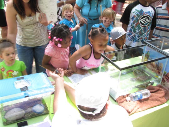 Children get up close with the critters at Salisbury