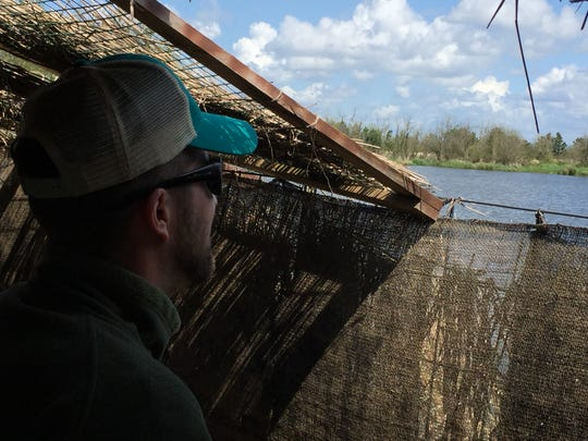 Luke Fitzpatrick peers from a duck blind on rural Turner's