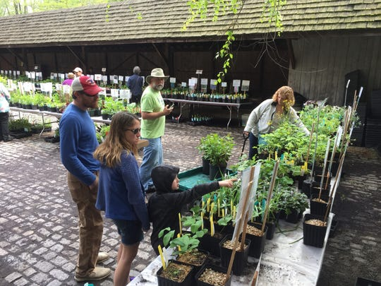 Sara Miscannon and 6-year-old son Liam, of Thornton, Pennsylvania, examine plants at the Brandywine Conservancy and Museum of Art  annual native plant sale.