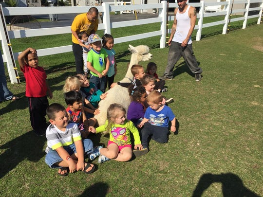 Alpacas have been in the United States for more than 25 years and are the fastest-growing livestock endeavor in the nation. Two Rivers' LondonDairy Alpacas will host Alpaca Odyssey and Farm Fest June 4.