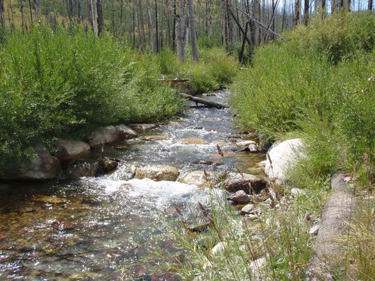 """Trout Unlimited, Big Blackfoot chapter, had many partners in this restoration of Snowbank Creek on the Blackfoot River including the U.S. Forest Service and Montana Fish, Wildlife and Parks. Work to restore the 132-mile Blackfoot River, hard hit by pollution, has focused on its tributaries, where native fish such as westslope cutthroat and bull trout spawn. """"It's been many millions of dollars over the years,"""" Ron Pierce, an FWP fisheries biologist, said of money spent on the improvements."""
