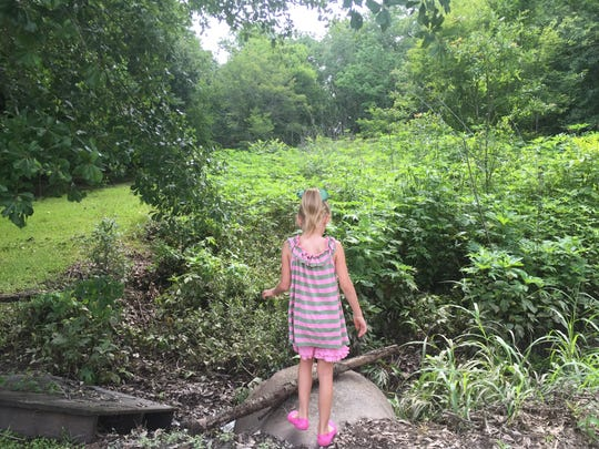 Sophia Reviere, 5, looks over an overgrown coulee next to her house, which nearly flooded again June 1, 2017.