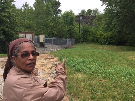Roberta Hillery points to Black Mountain, a two-acre