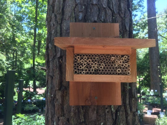 Bee House made by Native Nurseries.