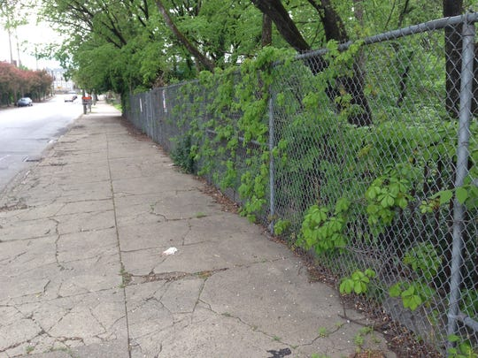 The vine-choked chain-link fence on Frankfort Avenue's Beargrass Creek bridge before the recent renovations