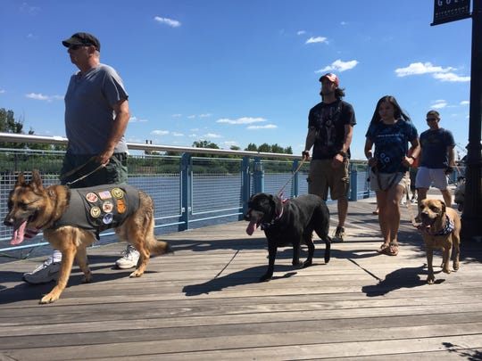 More than a dozen dogs and their owners joined the Delaware Human Association Sunday for a walk along the Wilmington Riverfront and a hang-out at Constitution Yards beer garden.