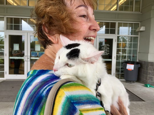 Mr. Lollipop. a 3-year-old cat, rests on the shoulder of her owner, Eau Gallie resident Barbara Leggett, outside the Wickham Park Community Center pet-friendly shelter.