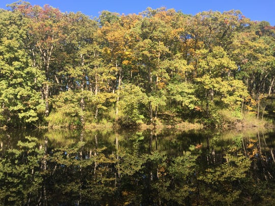Trees along a pond are shown at Sockum Ridge County Park on Oct. 16, 2017.