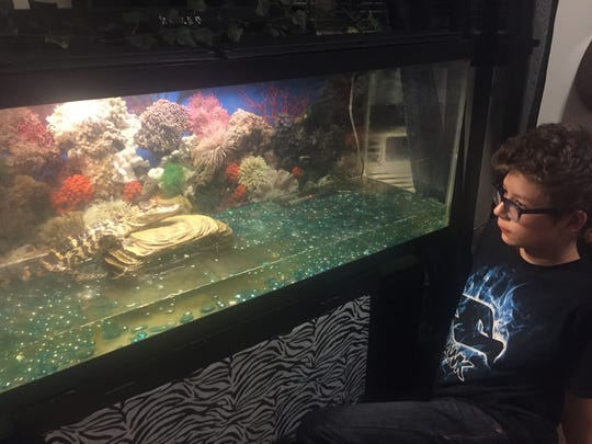 Kalib Still, 13, with the tank that holds his pet alligator
