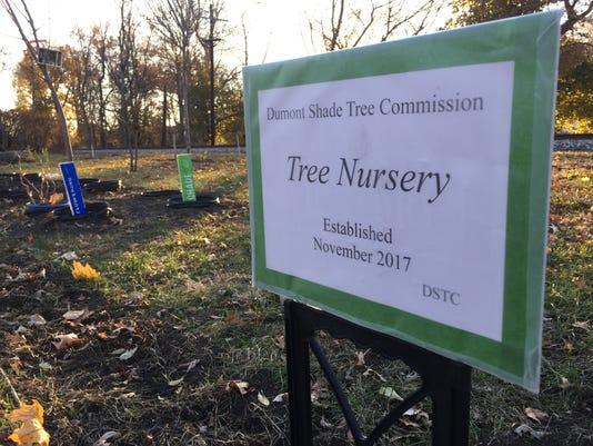 TreeNursery.jpg