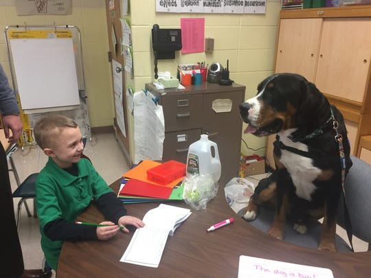 Haleyville Mauricetown School third-grader Evan Gromes enjoys a classroom visit from Skye, the school's certified therapy dog, on Feb. 9, 2018.