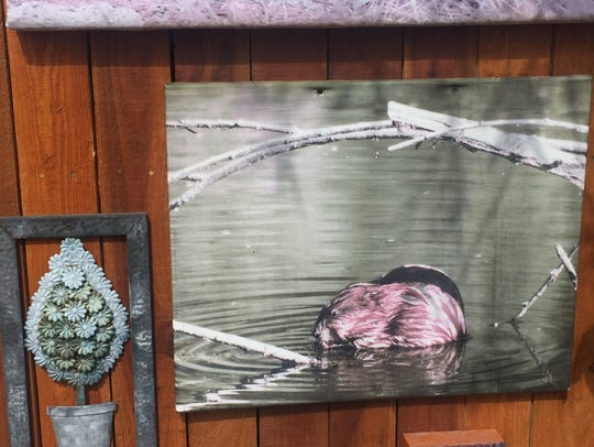 Scott Borchardt's favorite picture in the Coronado