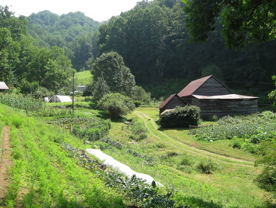 One of the gardens at Long Valley Eco-Biotic Farm.