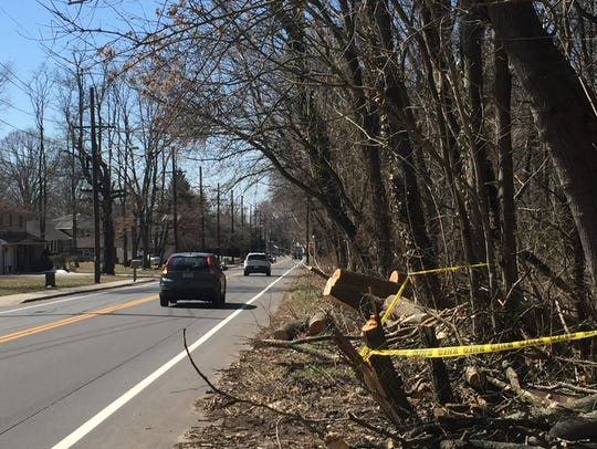 Caution tape marks the site where a tree last month