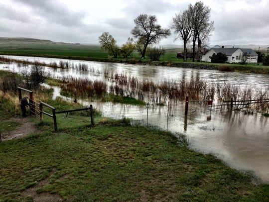The swollen Sun River, pictured Friday at noon at the
