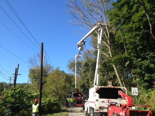 A utility crew prepares to remove dead ash trees. They died within two years of being infested with emerald ash borers.