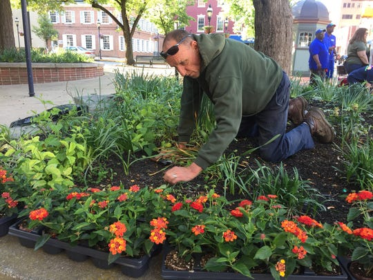 David Shirey of the York City Parks Department cleans up a bed on Continental Square in preparation for planting flowers.