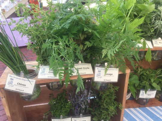 Just some of the herbs and plants available from Blue