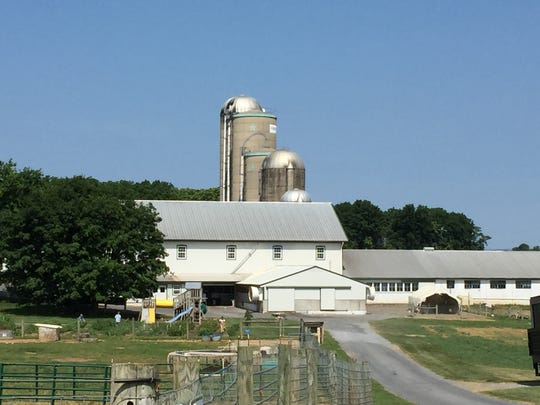 A shot of the Patches Family Farm, which supplies the dairy for the ice cream at Patches Family Creamery.