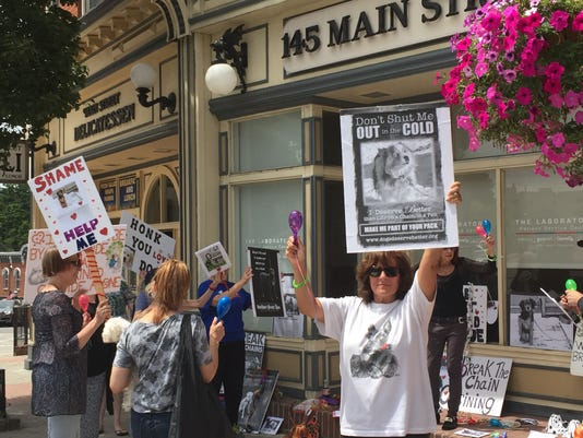 Ossining rally for animal tether law