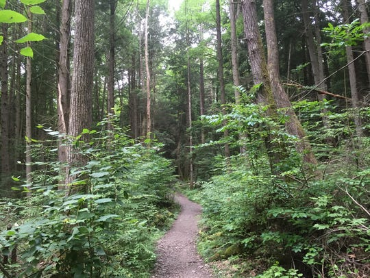 The Endless Walls Trail is a popular destination at