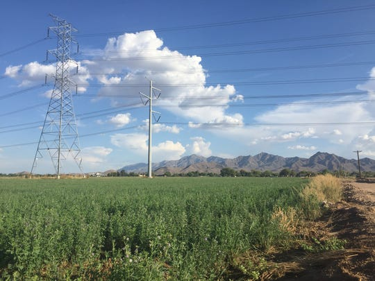 A new master-planned community of 1,124 acres is planned for south Avondale, just north the Estrella Mountains. Brookfield Residential, which is behind Eastmark in the East Valley, is the developer behind the project.