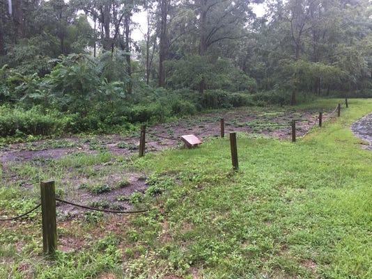 636722782990252490-burial-site.JPG