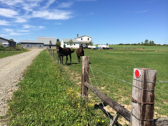 You pass a number of Amish farms on the back roads between Sonyea and Nunda. They wave to people walking by, but didn't seem to want to talk. Horses are as important to the Amish as cars are to the rest of us.