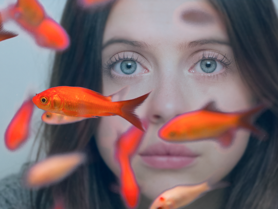 """Bel Powley in a scene from """"Carrie Pilby."""""""