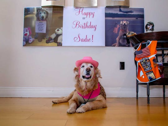 Sadie the Aviation Dog, who will turn 13 on Feb. 17, is asking friends and fans to send any birthday gifts to K9s For Warriors.