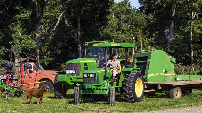 ADVANCE FOR RELEASE SUNDAY, JULY 2, 2017, AT 12:01 A.M. EDT. AND THEREAFTER- In this June 15, 2017 photo, Jeff Sykes, owner of Sykes Dairy Farm, works on his farm in Mebane, N.C. (Casey Toth/The Herald-Sun via AP)