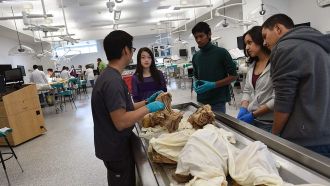 First year medical student Alex Coe, left, gives prospective students, from left, Emmy Tian, Siddhardha Maligireddy, Joanna Silva and Eber Moreno an up close look at the anatomy lab during an open house tour of the University of Nevada Medical School in Reno on April 11, 2015.