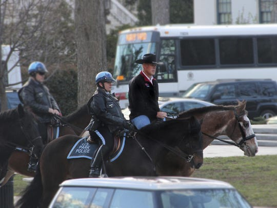 zinke horse