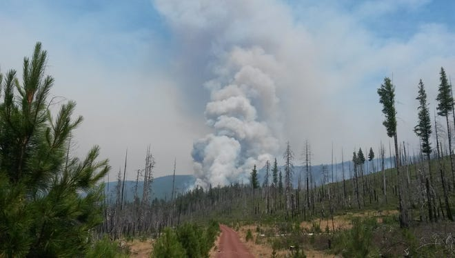 Controversy about how to manage federal forests to reduce wildfires continues.