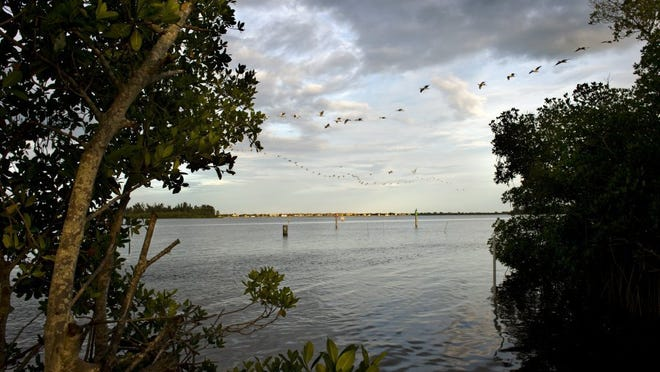 A flock of birds fly over the Indian River Lagoon at the Oslo Boat Ramp at sunset on September 30. TAKEN: September 30 2014