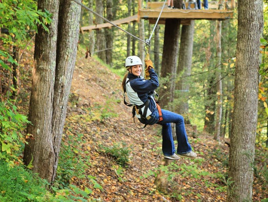 Ziplines, along with mountain coasters and tree canopy