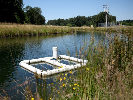 If small-scale testing proves effective, settling ponds