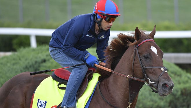 Irish War Cry is emblematic of the 143rd Kentucky Derby's field of 20 horses.